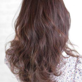 美髪の後ろ姿